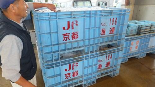 DSCF2456.JPG