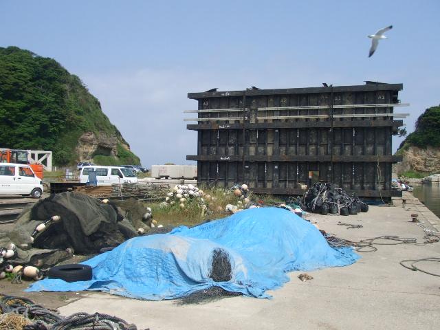 2007_0611uomasa0028.JPG