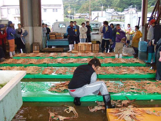 2007_1106uomasa0059.JPG