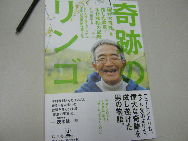 DSCF4817_1.JPG